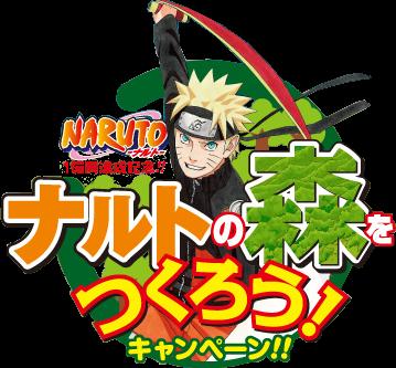 Narutos Forrest